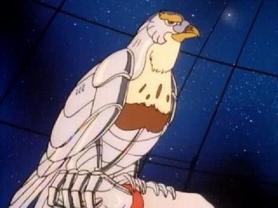Halcón Vigía (Tally Hawk)